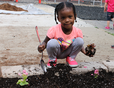 Preschoolers enjoy planting flowers in our playground garden.